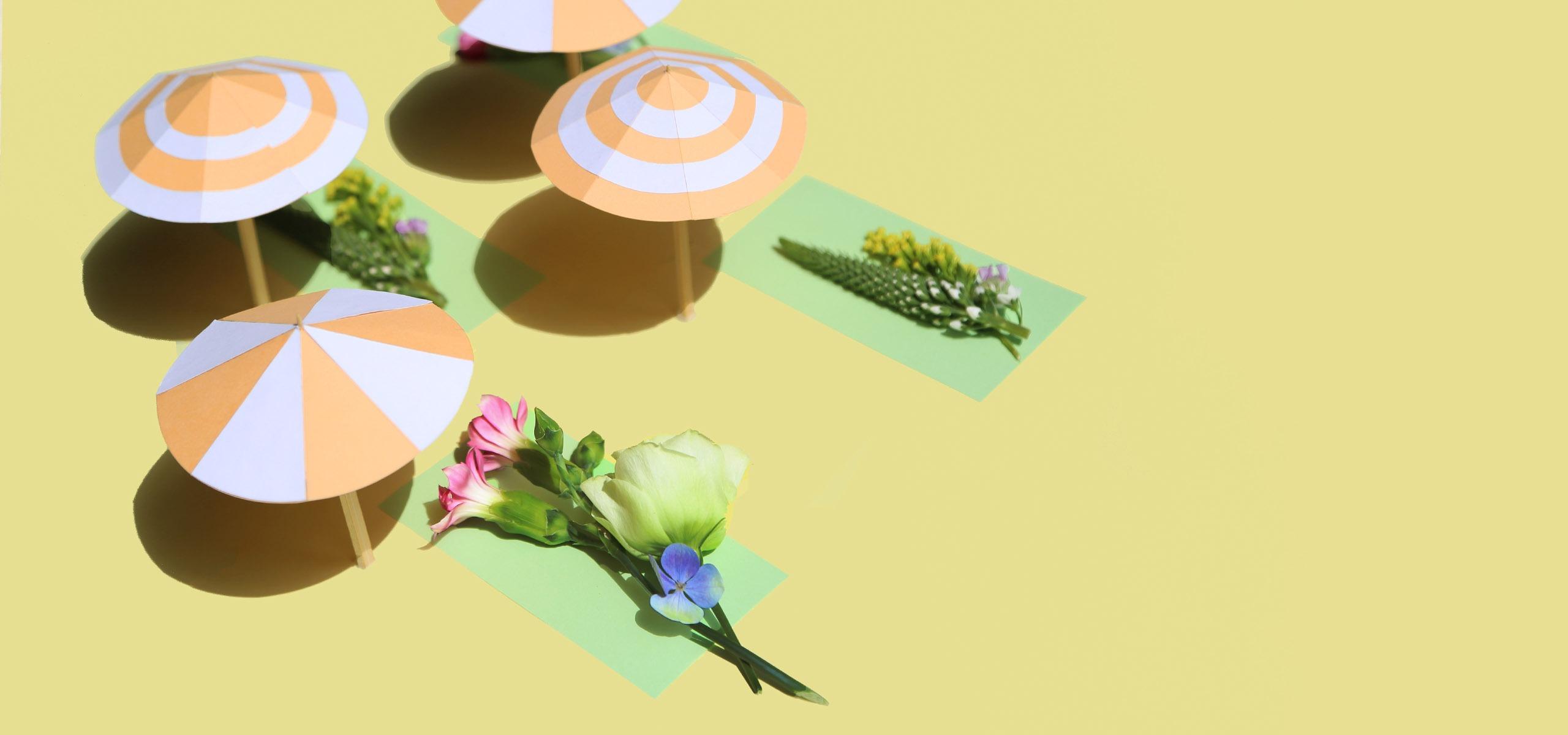 Les fleurs et la canicule: guide de survie !
