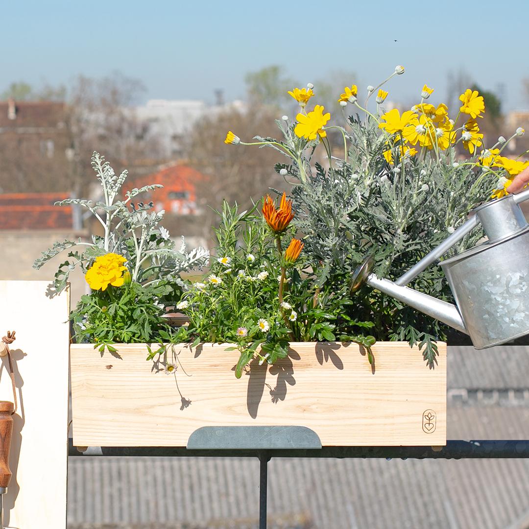 La jardinière plein soleil