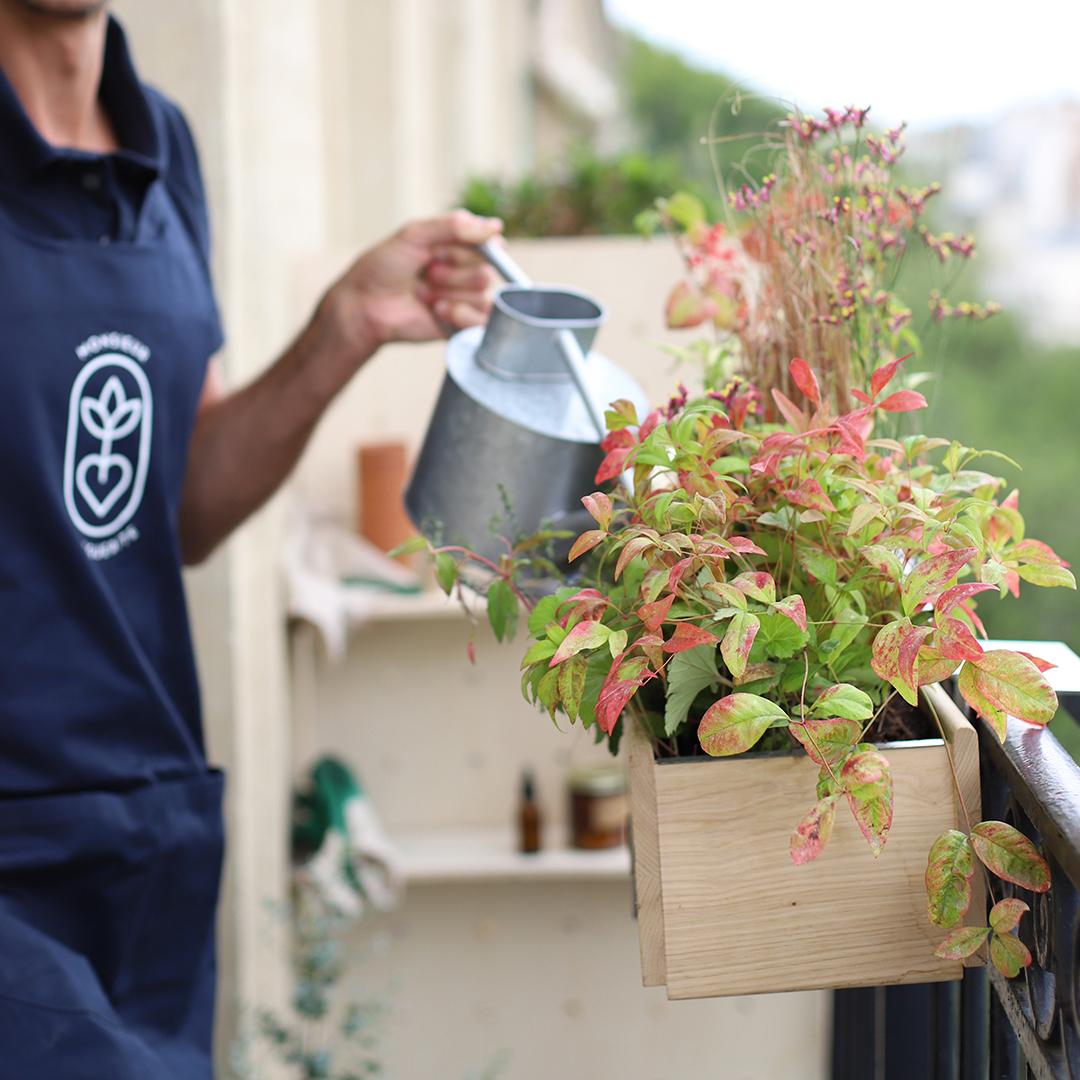Nos conseils d'entretien spécial jardinière