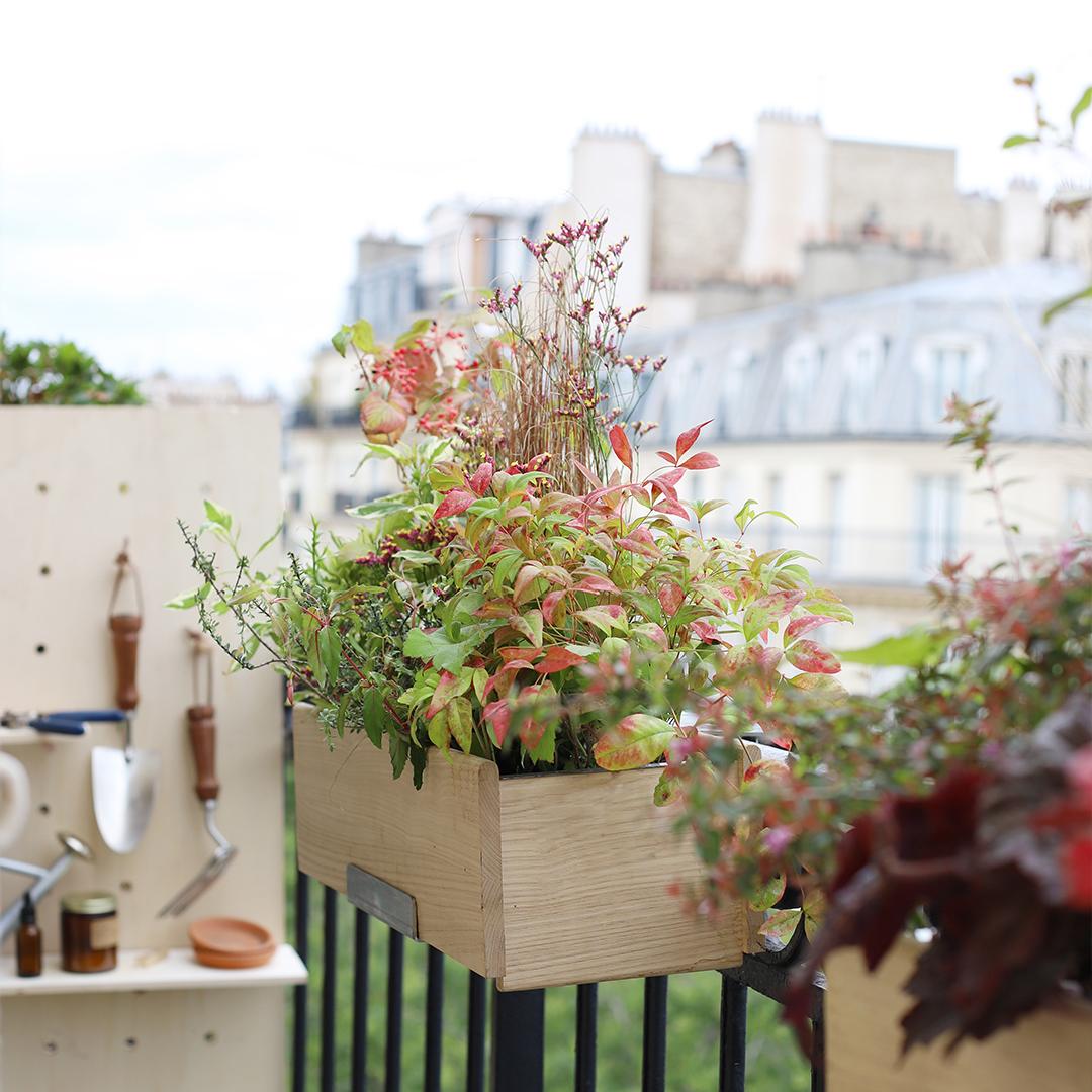 La jardinière d'exception Monsieur Marguerite