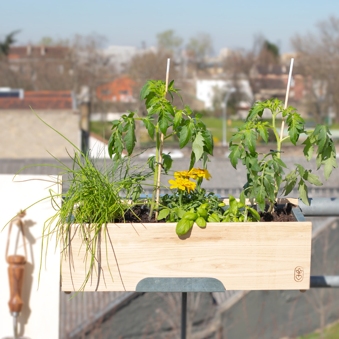 Nos jardinières potagères