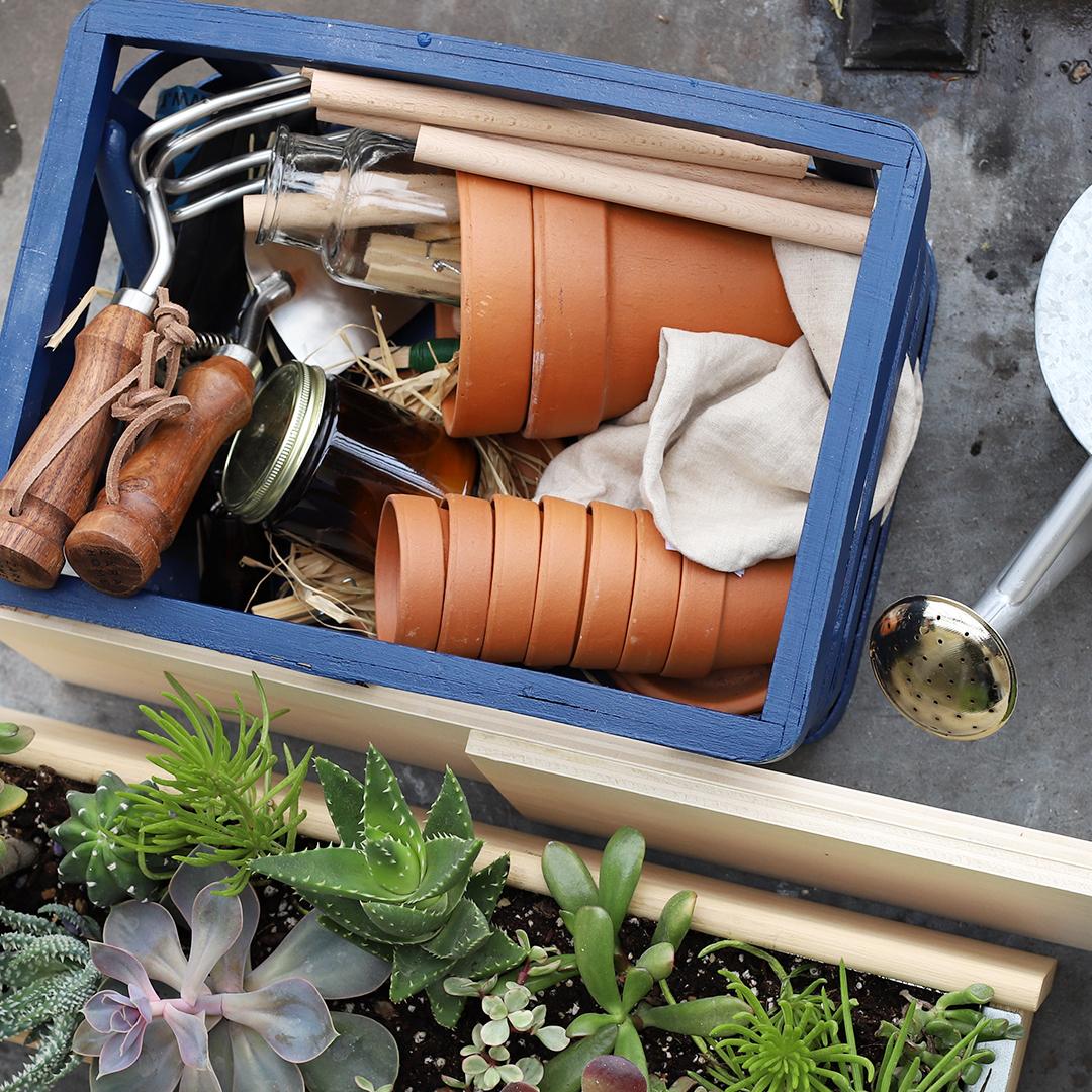 Le lexique du jardinier